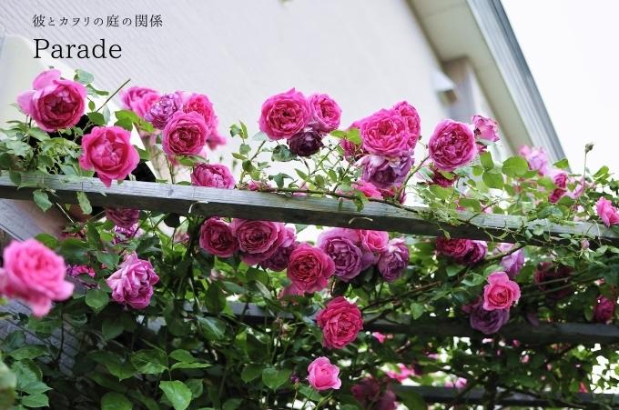 c0365716_20443871.jpg