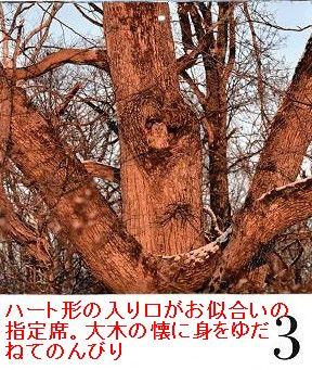 d0065324_22532124.jpg