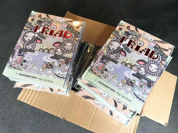 水野純子の『トライアド』発送開始と、予備分発売_a0077842_15572294.jpg