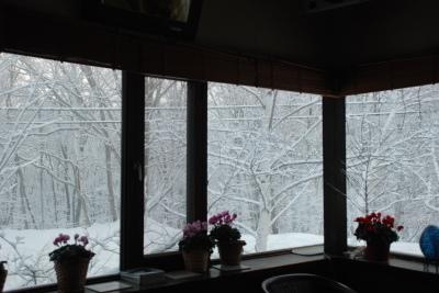 3月3日 金曜日  小雪  0℃_f0210811_08594911.jpg