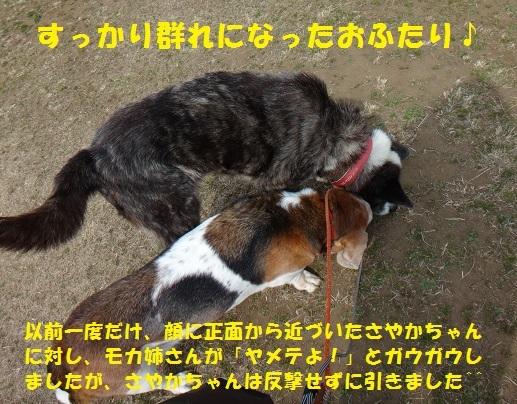 f0121712_08001724.jpg
