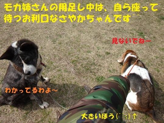 f0121712_08101049.jpg