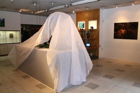 まちなか美術館へようこそ 「東の熊、青い森の幽霊」_f0237658_17133318.jpg