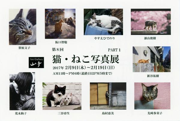 第8回 猫・ねこ写真展 Art Gallery 山手 横浜 ピンホール写真 Pinhole Photography_f0117059_2040238.jpg