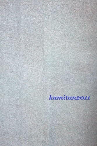 b0249661_19394700.jpg