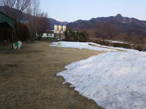 3月4日のランの風景_d0148408_18144683.jpg
