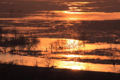 夕焼けシーズン到来  3月4日_f0113639_14151022.jpg