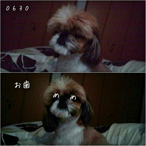 b0306158_10524197.jpg