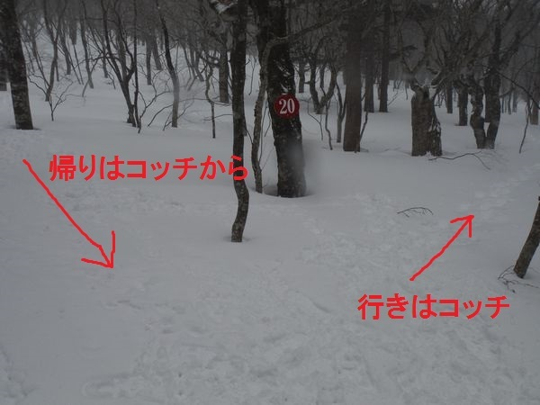 c0294658_21553092.jpg