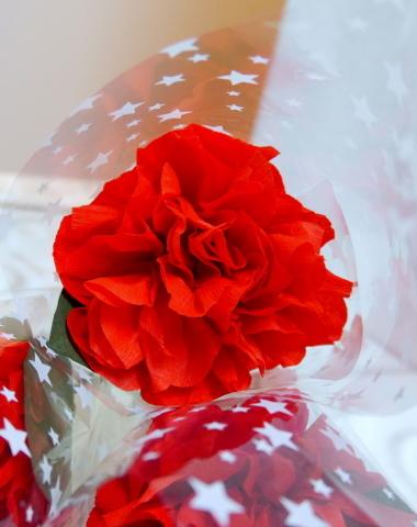 赤いフラワー_b0301949_15202054.jpg