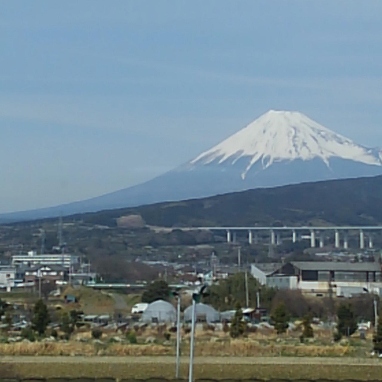 明日からの同窓会コンサート兵庫ツアーに向けて山田パンダ一足お先に神戸に向かってます_b0096957_13071185.jpg