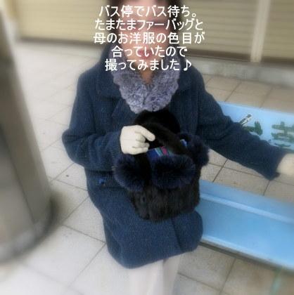 f0236260_00242873.jpg