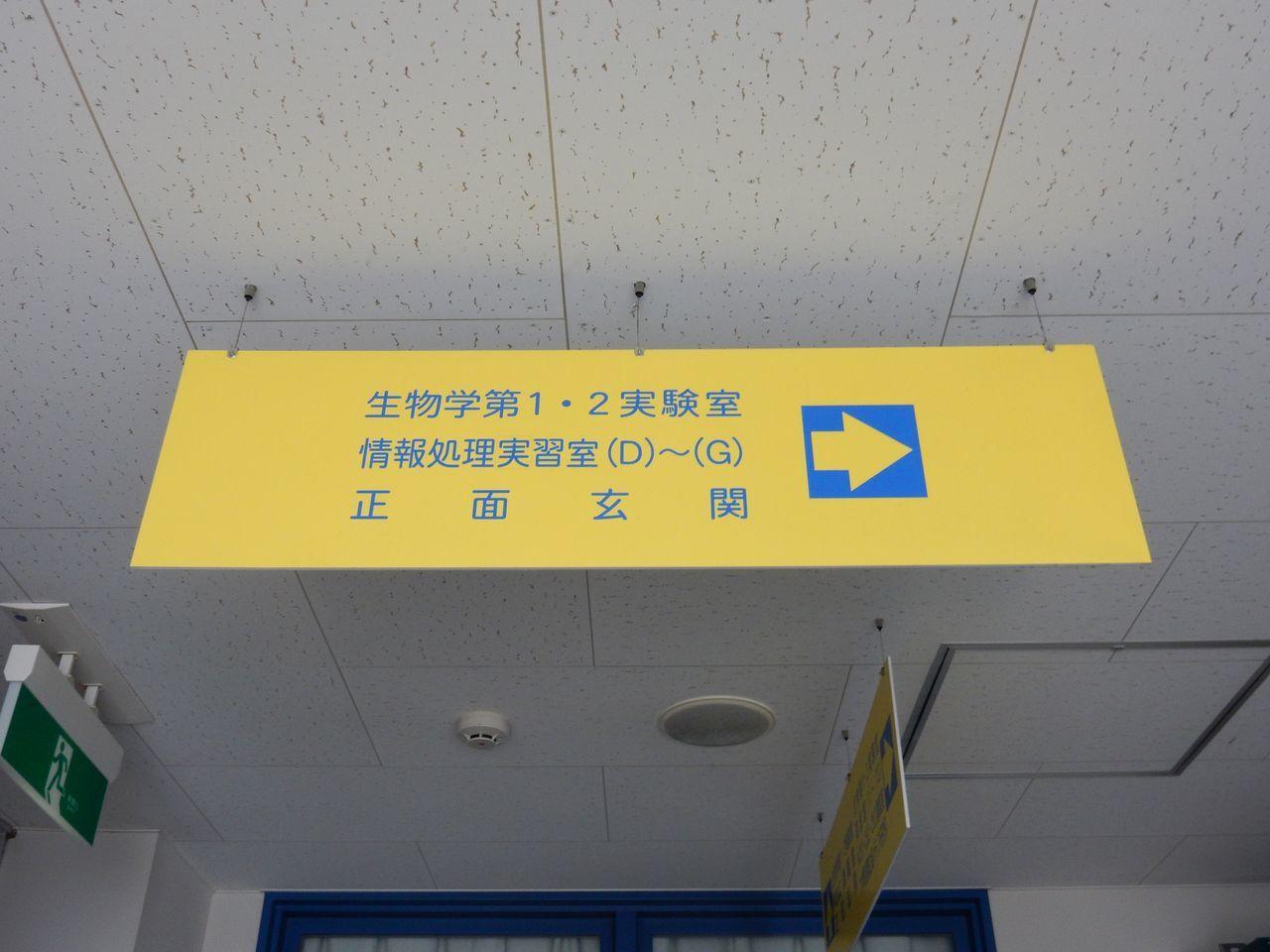 大学は春休み_c0025115_20254676.jpg