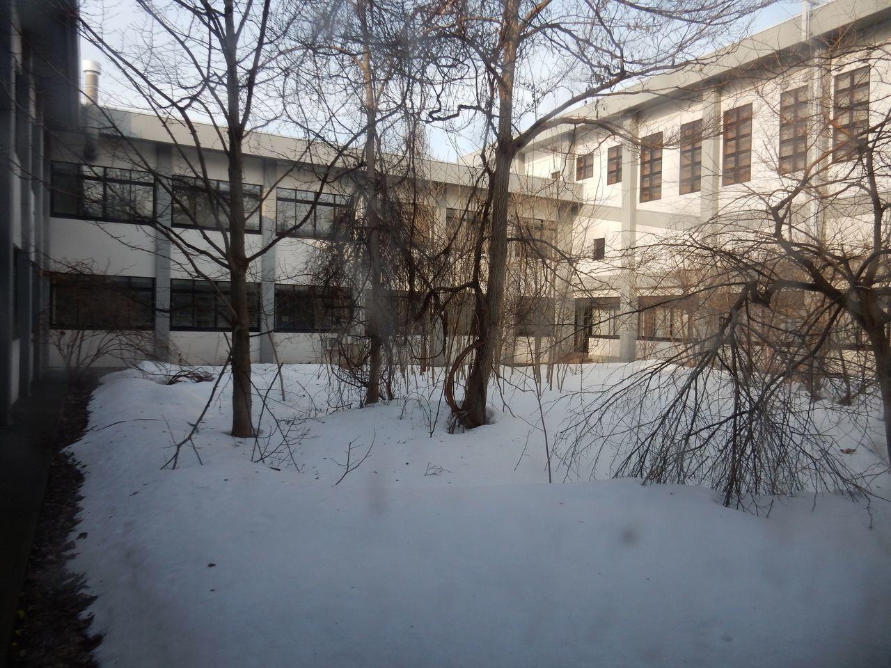 大学は春休み_c0025115_20262196.jpg