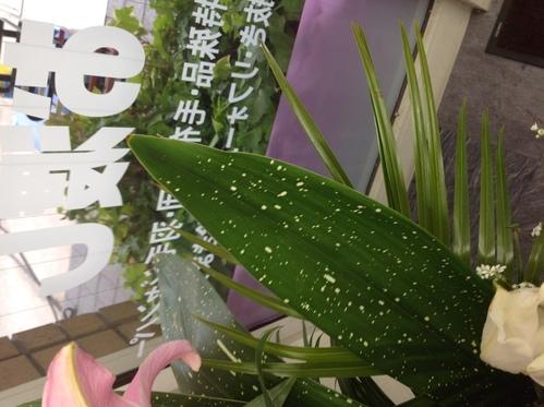 花粉がすごいですʅ(◞‿◟)ʃ_a0200423_13131614.jpg