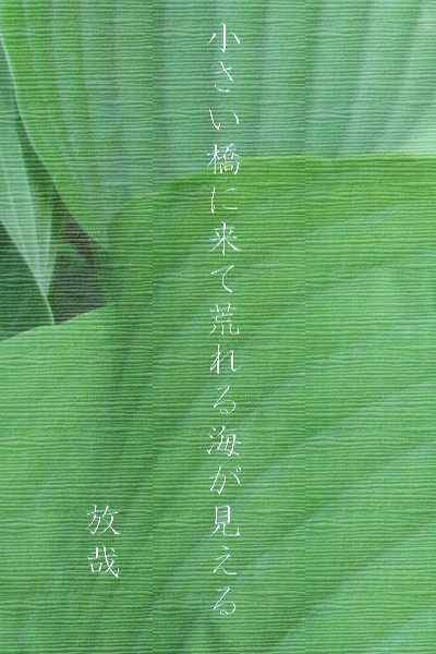 f0117041_16091982.jpg
