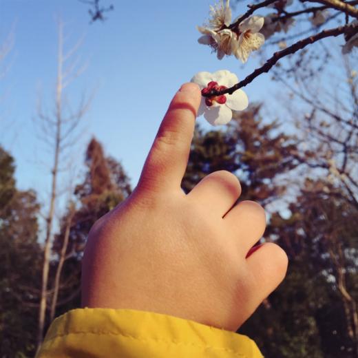 やってきたよ春と花粉とやさにちマリアル。_a0127284_09370630.jpg