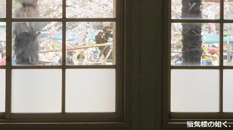 「のんのんびより」舞台探訪005 旭ヶ丘分校・H28さくら祭りの旧下里分校へ(主に1話とリピート1話)_e0304702_12292055.jpg