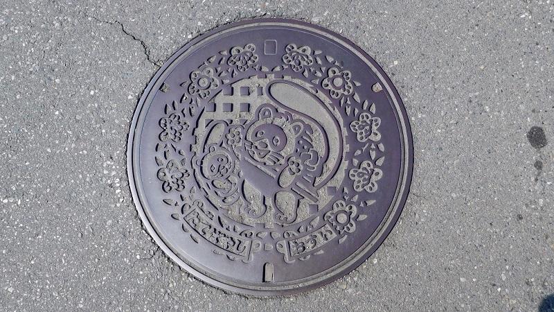 館林駅前観光案内所で館林市のマンホールカード(6か所目)をいただきました、市のMH蓋も(H290305)_e0304702_19580276.jpg