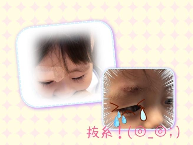b0166327_21542932.jpg