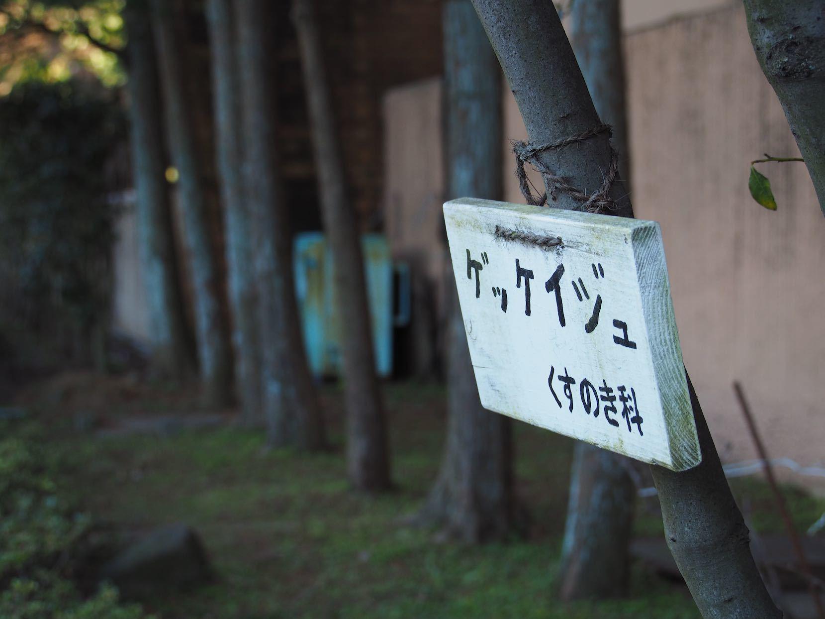 東急多摩川駅周辺1_b0360240_21364036.jpg