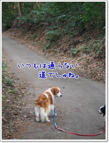 d0013149_01012613.jpg