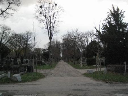 ウィーンの中央墓地(ドイツ・ニュース・ダイジェスト2月のコラムより)_a0280569_05915.jpg