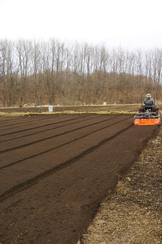 今季初の肥料撒き。スナップエンドウを植える。_c0110869_6235629.jpg