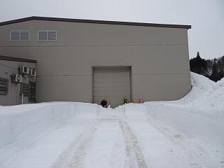 雪入れ開始_d0122374_075364.jpg