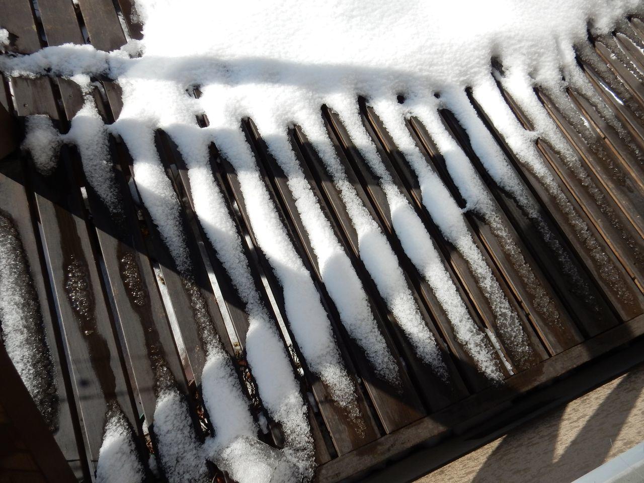 冬は終わったかな_c0025115_21094572.jpg