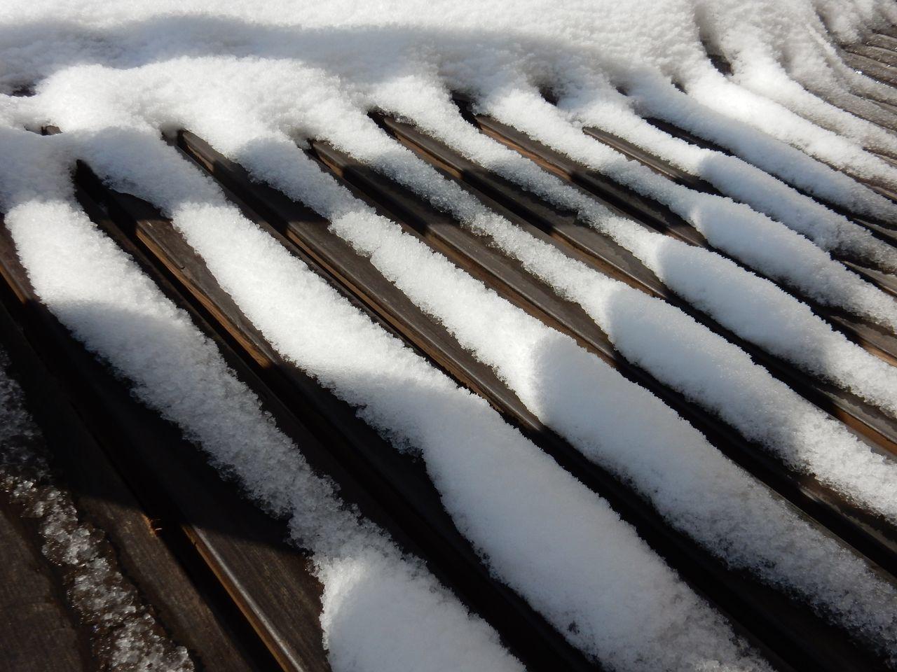 冬は終わったかな_c0025115_21094935.jpg
