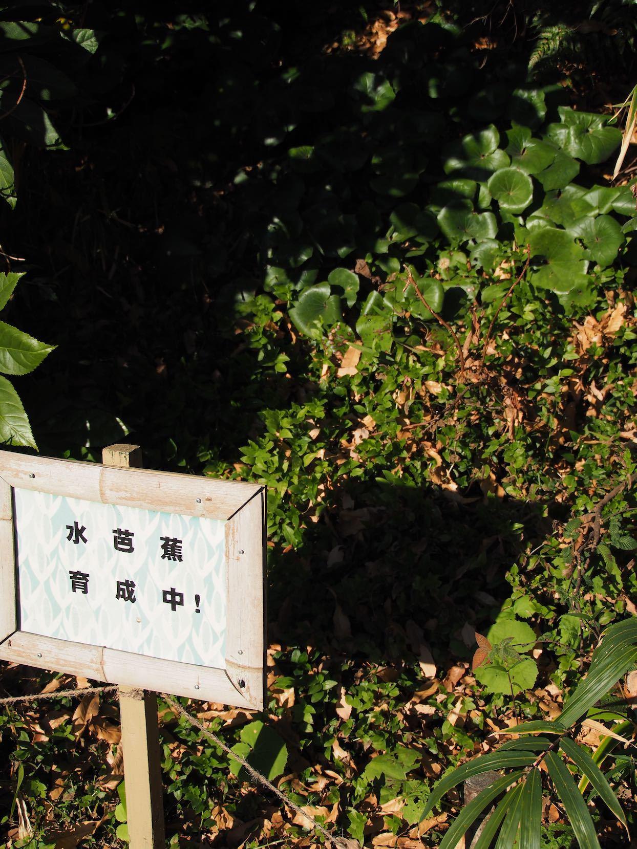 東急多摩川駅周辺2_b0360240_21121271.jpg
