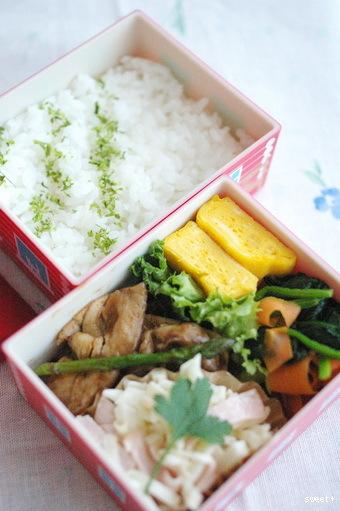 今日の豚アスパラ炒め弁当とお弁当作りのコツ_d0327373_12445033.jpg