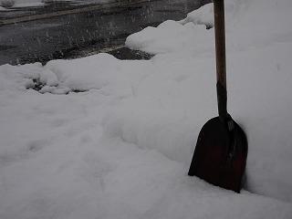 また雪へ_d0122374_20415577.jpg