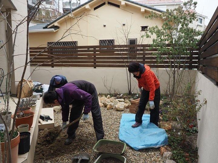 一昨年造園したお庭に 新たに木を植えました_e0232798_11294885.jpg