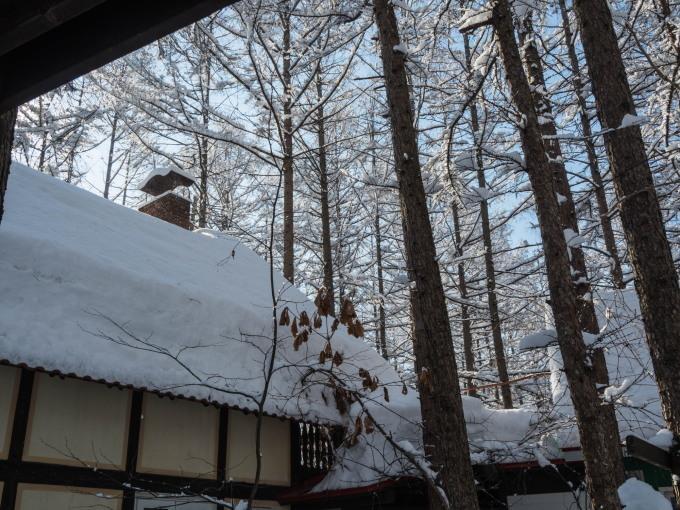 雪のち晴れ・・木の枝で毛づくろいのエゾリス君_f0276498_14324190.jpg