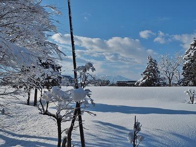 春の雪_c0336902_21253644.jpg