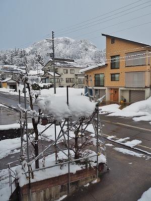 春の雪_c0336902_21253999.jpg