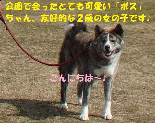 f0121712_08482475.jpg