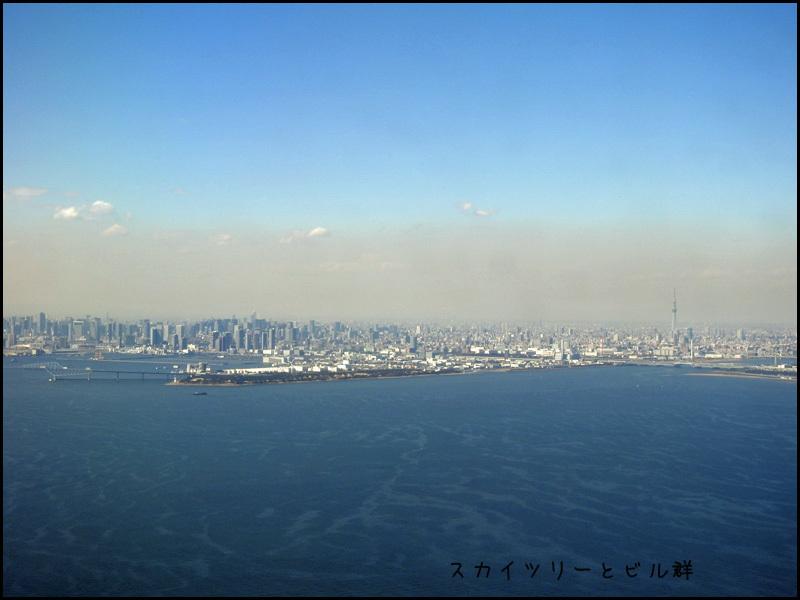 東京に来ました~(飛行機の中から撮影)_b0019313_16421855.jpg