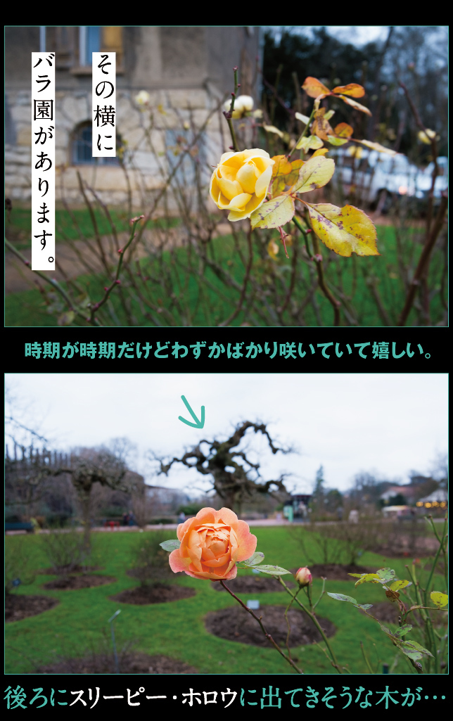 a0358016_16175974.jpg