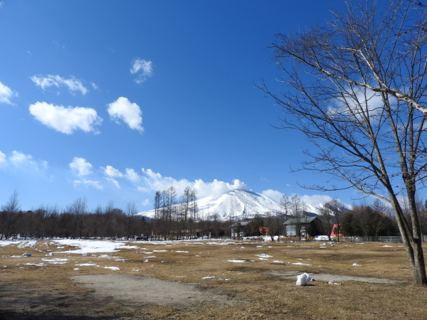 週末の天気と気温(3月2週目)_b0174425_14463942.jpg