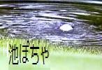 池ポチャOB_f0053757_116814.jpg