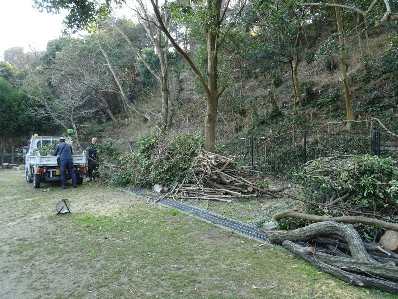 伐採木の片付けと手すり取り付け・・・うみべの森_c0108460_20285075.jpg