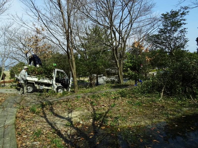 伐採木の片付けと手すり取り付け・・・うみべの森_c0108460_20310747.jpg