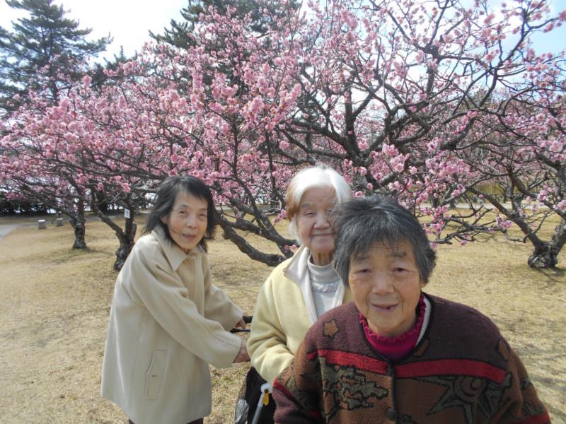 春めいてきましたね♫_f0220087_833478.jpg