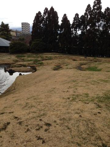 京都の朱雀の庭と低周波音被害者の会_c0185356_21111116.jpg
