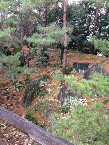 京都の朱雀の庭と低周波音被害者の会_c0185356_21175396.jpg