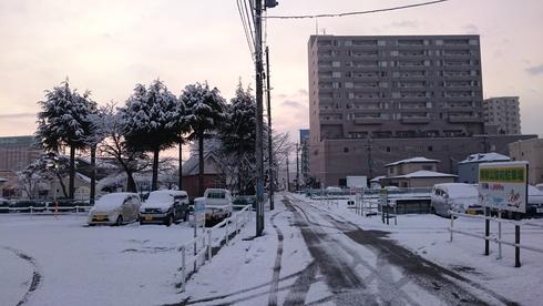 冬に逆戻り_c0050063_15103582.jpg