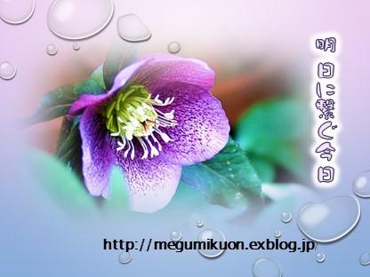 f0214467_08234491.jpg